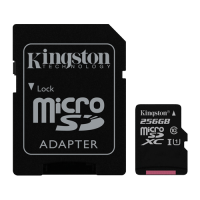 Canvas Select Kingston, micro SD kartica sa adapterom, 256GB